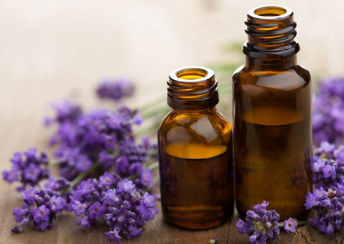 lavender oil for babies