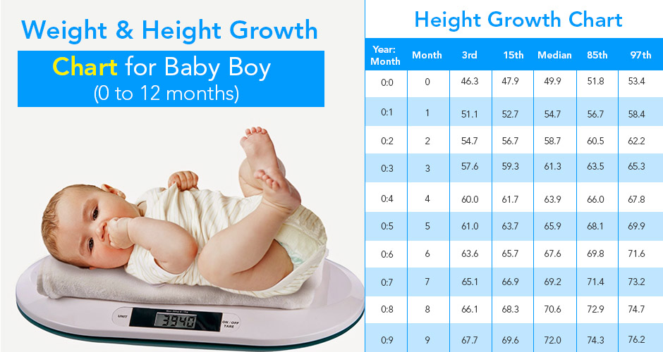 Weight And Height Growth Chart For A Baby Boy (0 to 12 Months)