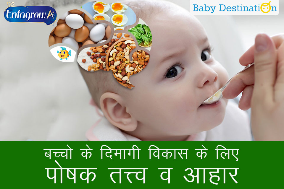 बच्चो के दिमागी विकास के लिए पोषक तत्त्व व आहार