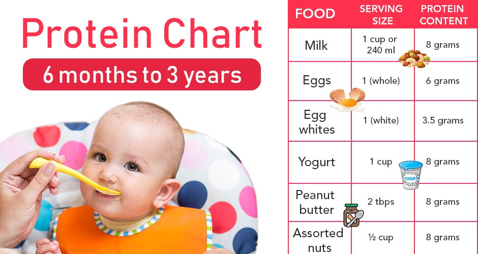 How Much Protein Does Your Child Need? (6 Months To 3 Years)