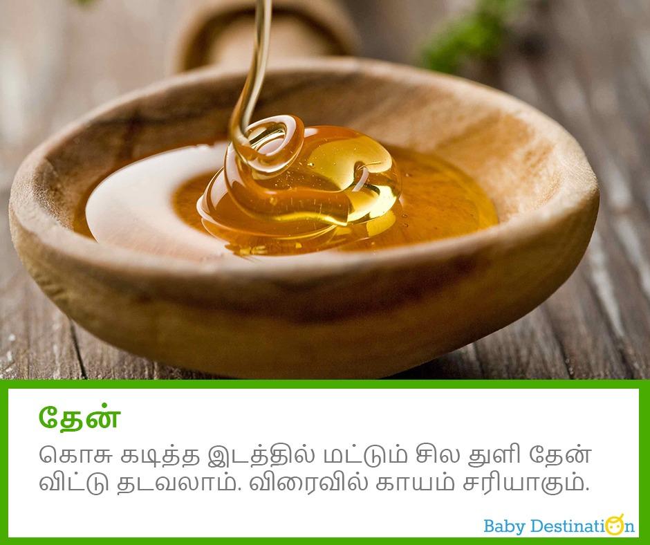 கொசு கடி காயத்தை நீக்கும் 5 வீட்டு வைத்தியம்
