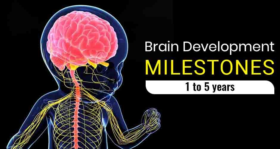 Brain Development Milestones In Children In The First 5 Years