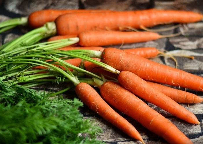 carrot for teeth growth
