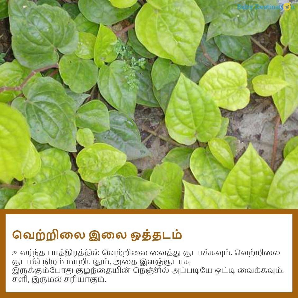 சளி, இருமலை விரட்டும் 5 வீட்டு வைத்தியம்