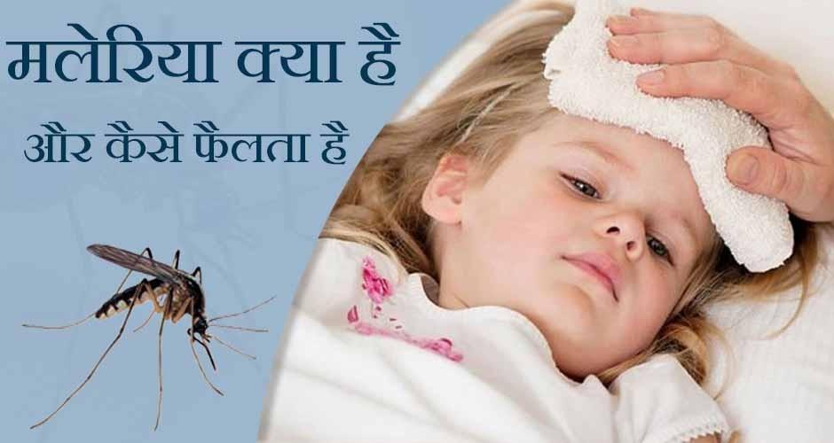 मलेरिया क्या है और मलेरिया कैसे फैलता है