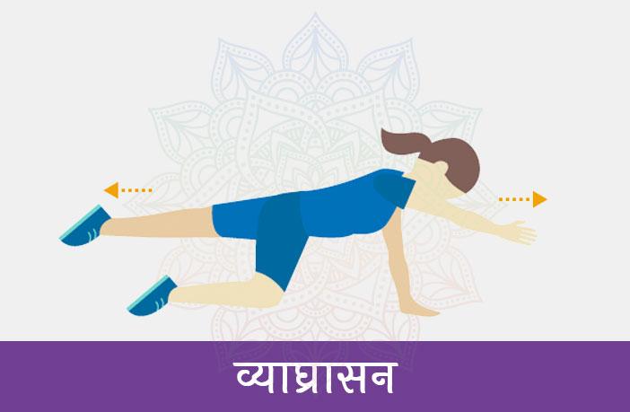 व्याघ्रासन (Vyaghrasan)