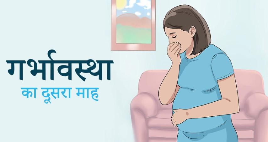 गर्भावस्था का दूसरा महीना: लक्षण, बच्चे का विकास, खानपान व देखभाल