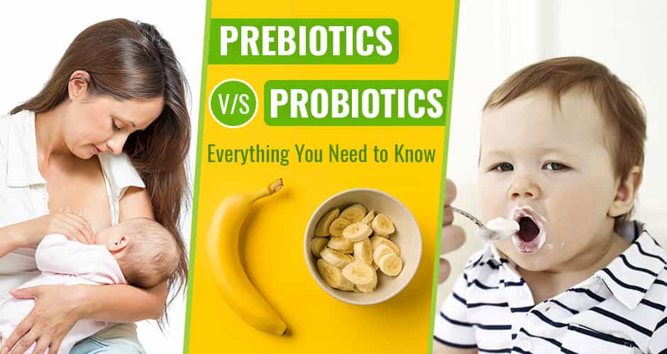 Prebiotics versus Probiotics - Everything You Need to Know