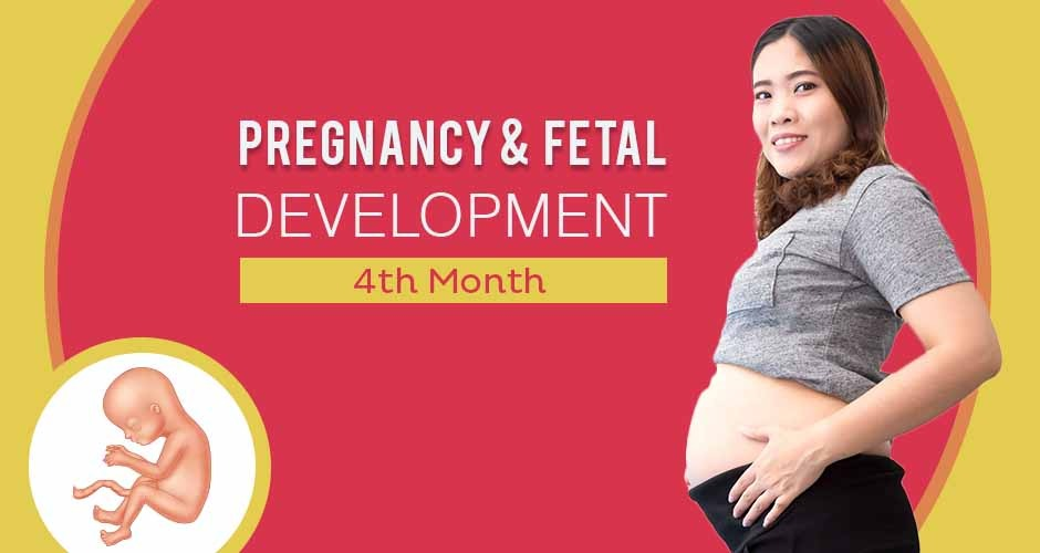 Fourth Month Pregnancy : Care, Diet, Symptoms & Foetus Changes