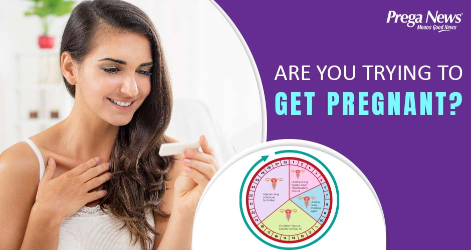 Trying To Get Pregnant? Learn How To Track Your Ovulation!